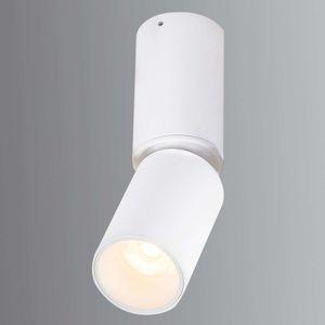 Pohyblivé stropné LED svetlo Luwin z hliníka