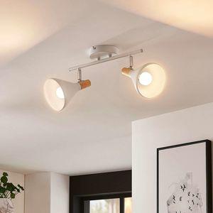 Stropné LED svietidlo Arina biele 2-plameňové